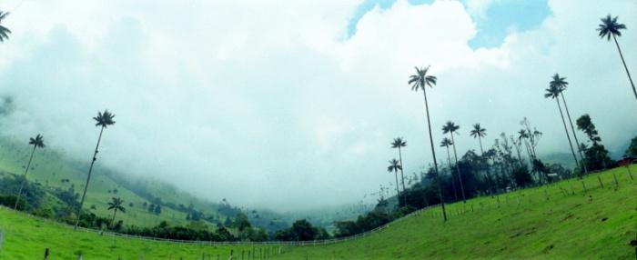 https://fincasquindioya.com/wp-content/uploads/2012/09/10_mejores_videos_-sobre_Quindio_que_usted_no_conocia_1.jpg