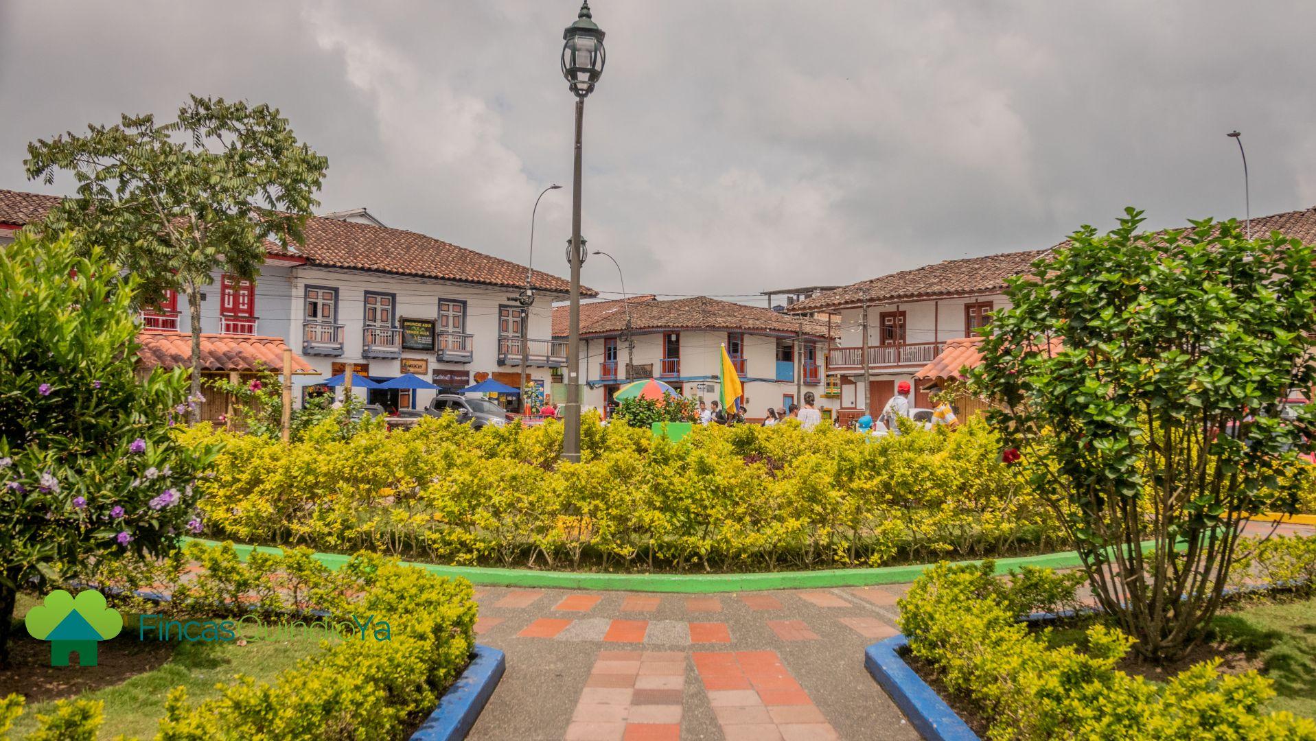 Foto mostrando arbustos decorativos en la mitad de la plaza