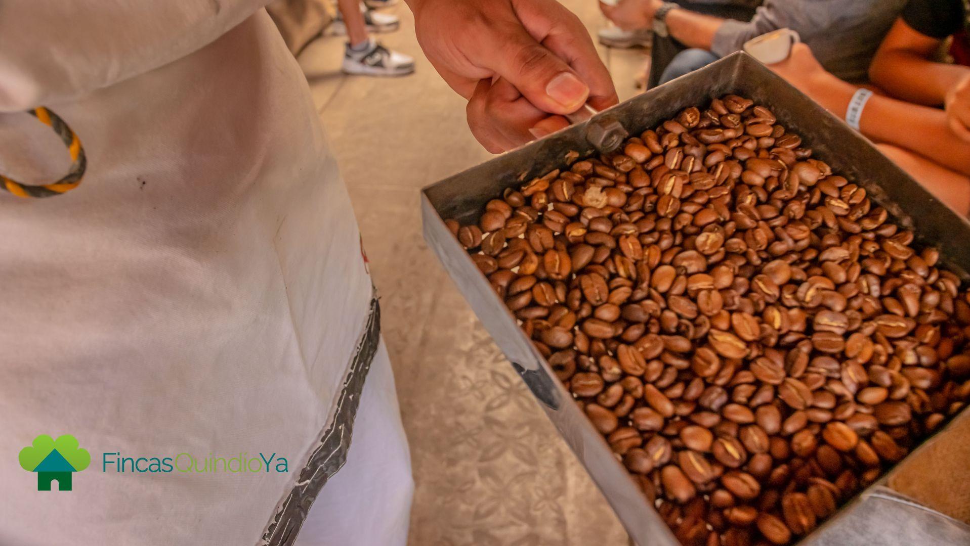 Hombre sosteniendo una contenedor de granos de café