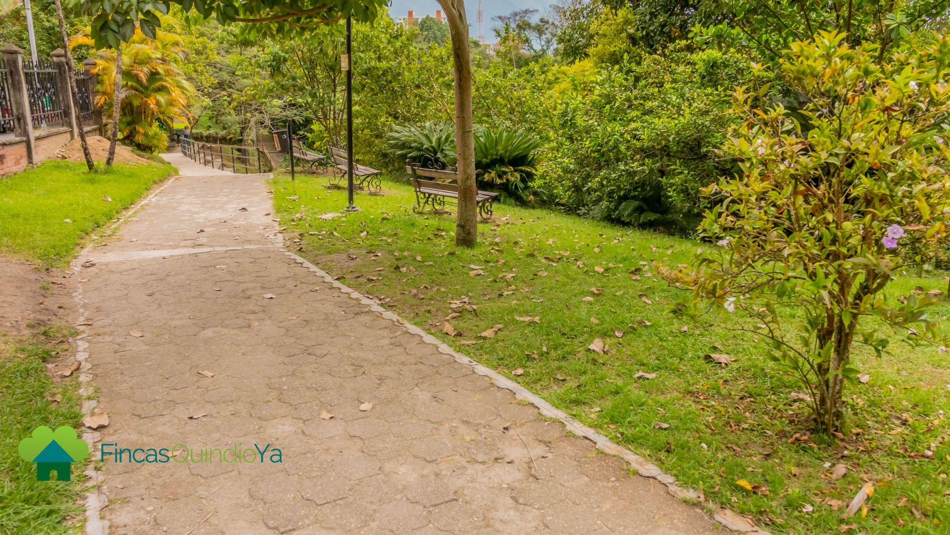 Un sendero y a sus lados arboles y pasto en El Parque