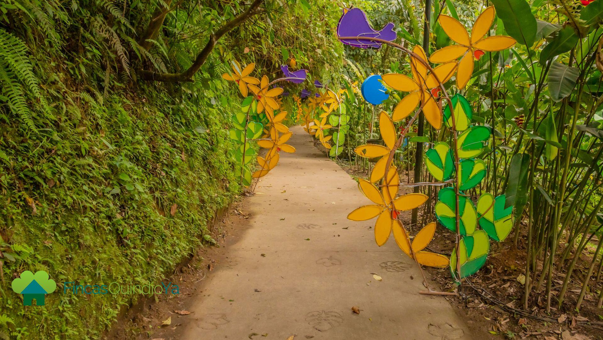 Luces decorativas en un sendero en El Parque de la Vida de Armenia