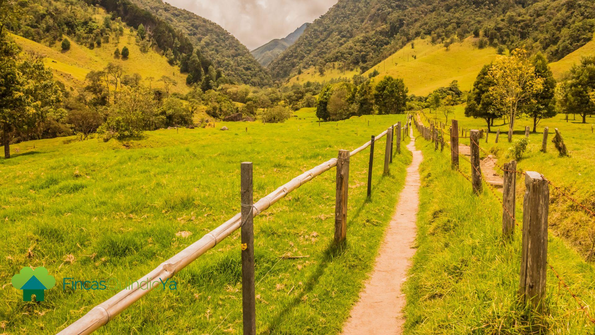 Caminos individuales con vallas a los lados