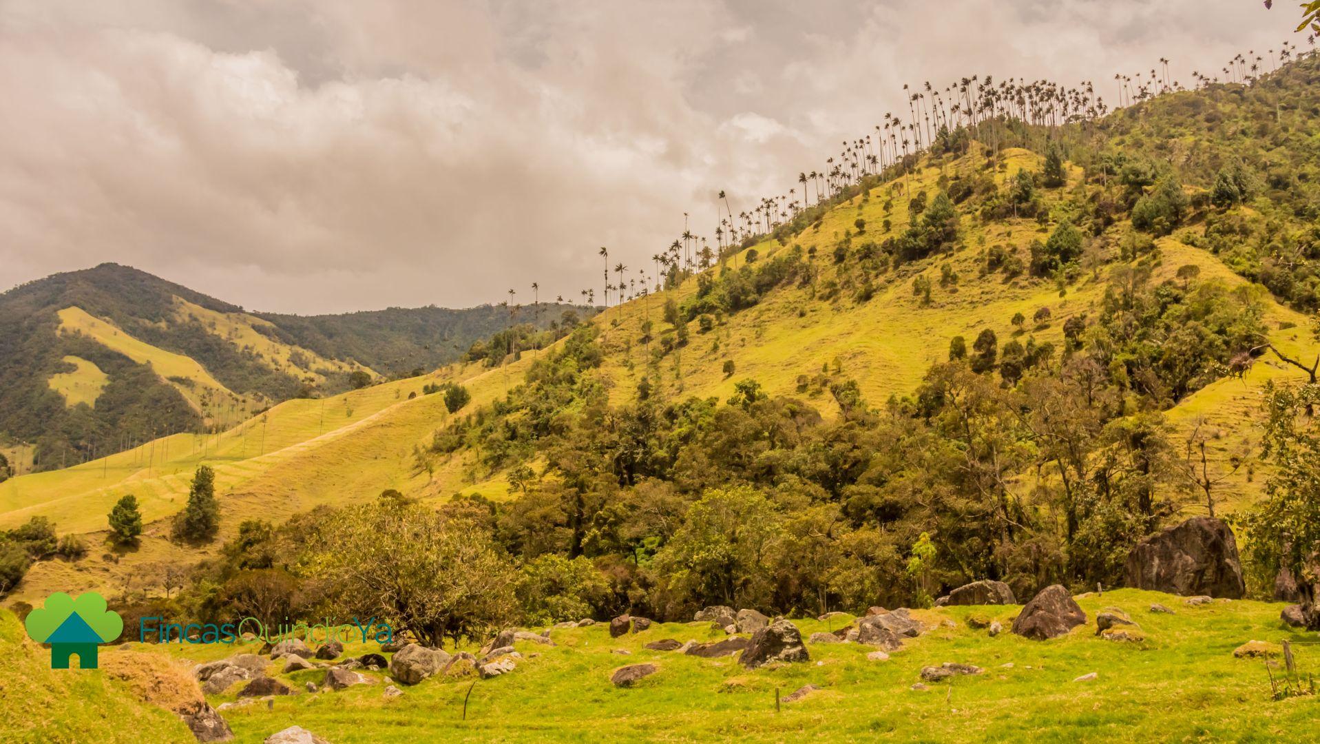 Foto de montañas que se pueden ver desde allí