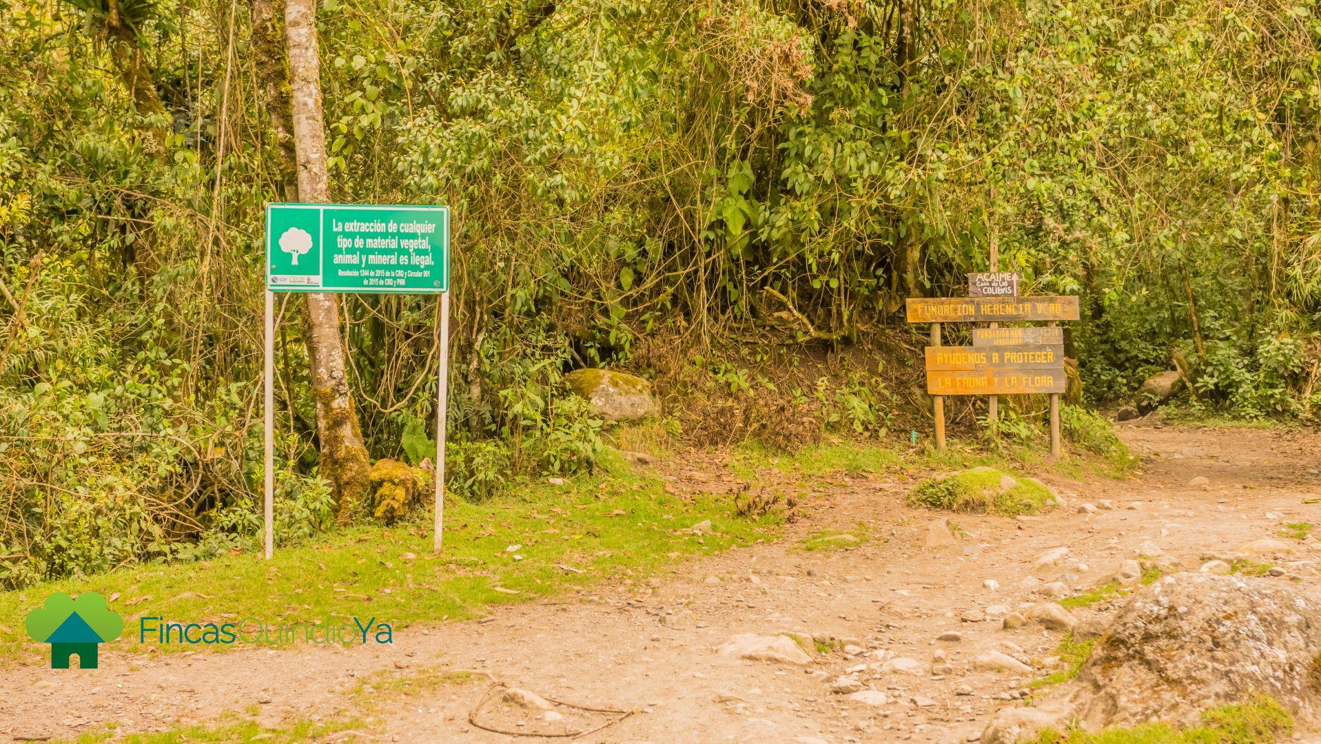 Sendero con avisos del Valle del Cocora