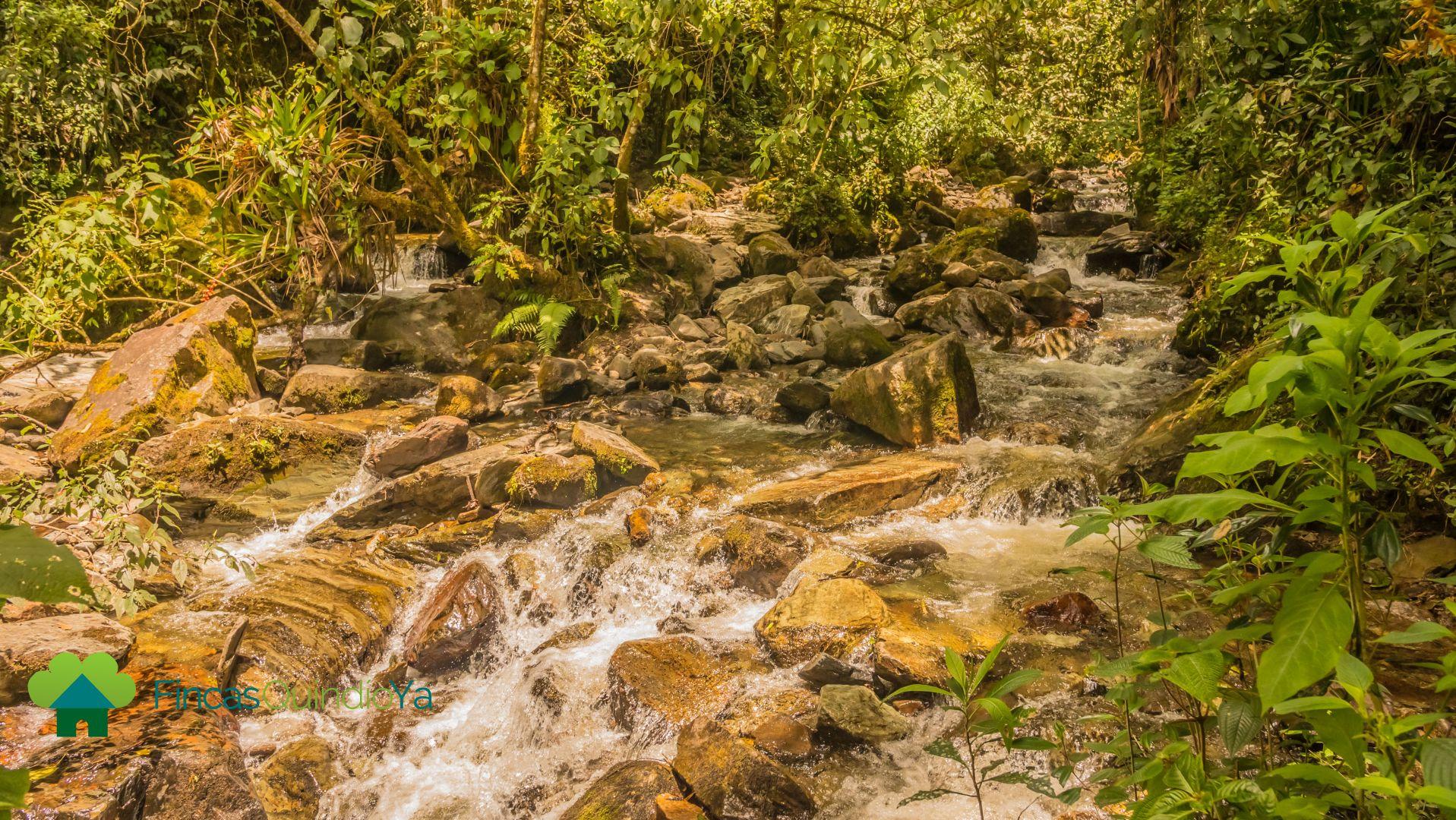 Foto de un Rio en el Valle